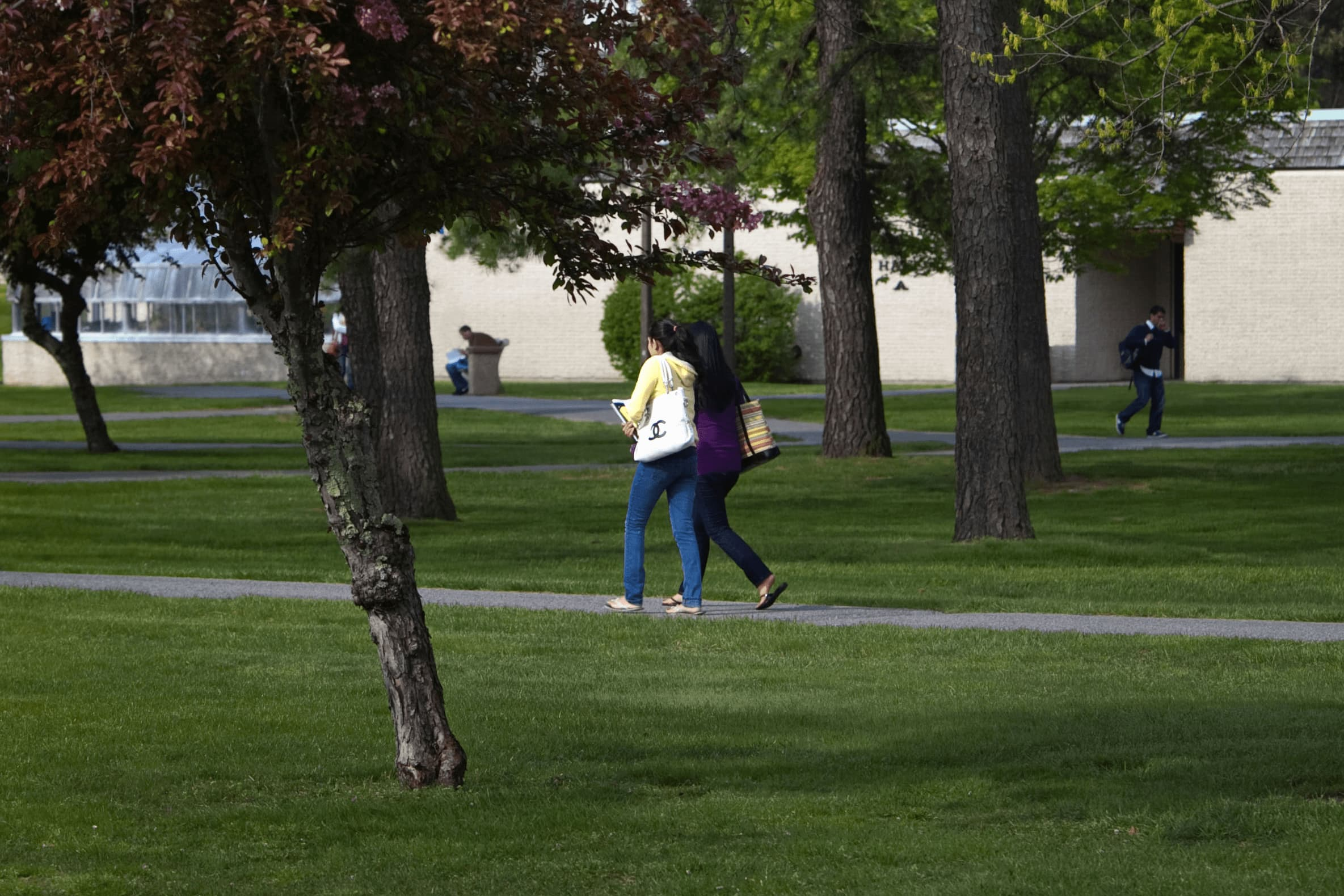Students walking safely across campus