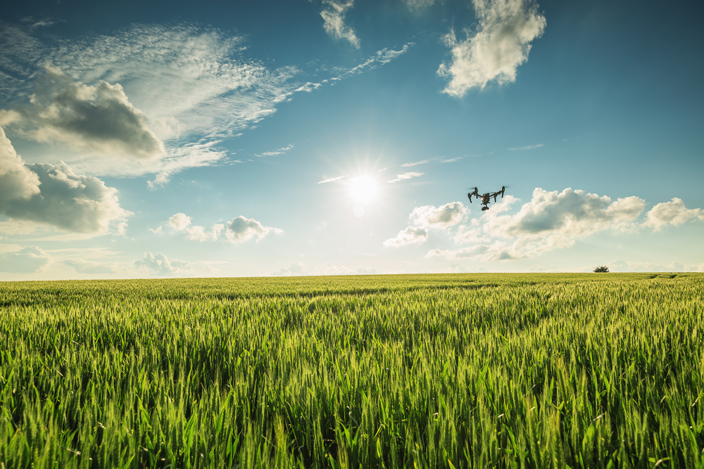 drone flying in sky over field
